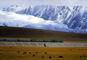 Train le plus long du Tibet